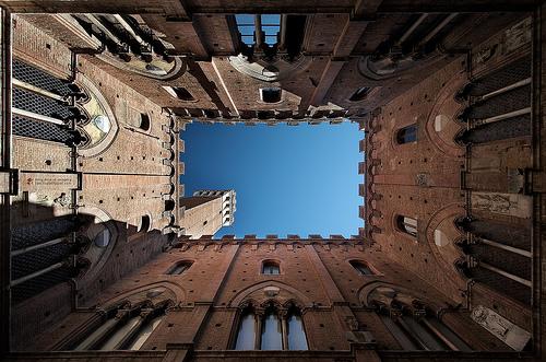 Siena, looking up!