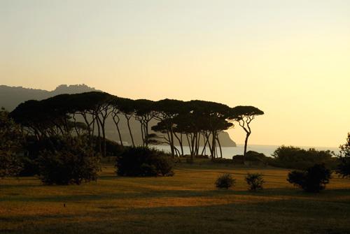 Beach of Etruscan Coast