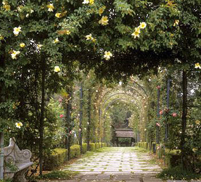 Tuscany gardens for Tuscan landscape design